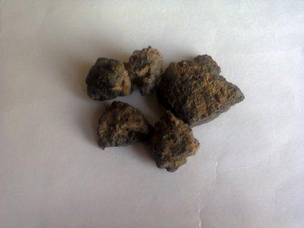 أحجار نيزكية للبيع ( كتلتها حوالي كيلوغرام واحد)