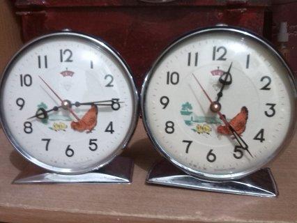 ساعة دجاجة وكتاكيتها