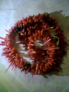 قلادة من المرجان