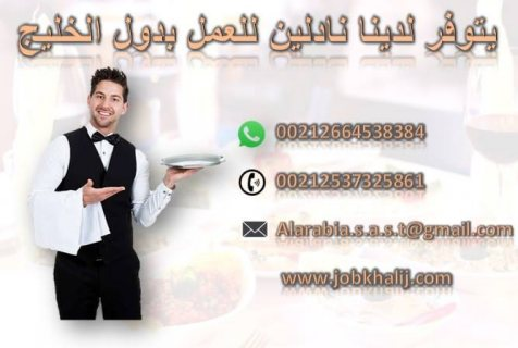 يتوفر لدينا نادلين شباب من الجنسية المغربية جاهزين العمل بدول الخليج