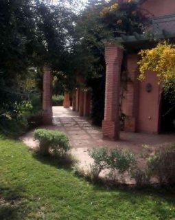 ممر النخيل منتجع النخيل 3 مراكش المغرب