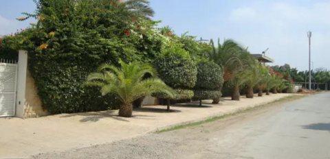 Terrain commercial ou résidentiel a Bir Kacem