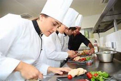 استقدام طباخين مغاربة خبرة في الطبخ الشرقي والمغربي والغربي