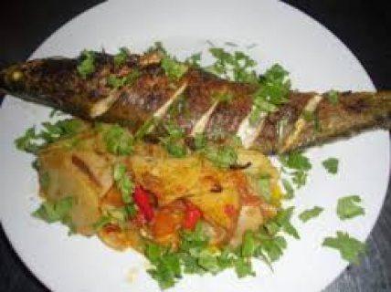 شيف تخصص الماكولات البحرية من الجنسية المغربية جاهزين للاستقدام