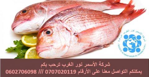 عرض عمل مجاني بالمملكة العربية السعودية بمهنة متخصصين اسماك
