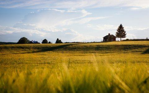 اراضي فلاحية للسكن و الزراعة.نوحي الرباط.القنيطرة.تيفلت