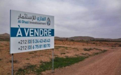 مزرعة للبيع على طريق فاس: 35000م – منزل/190 شجرة زيتون