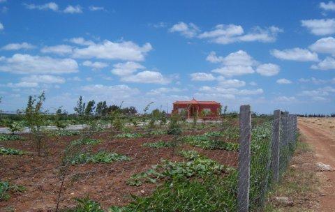 مزرعة غاية في الروعة بمنزل للبيع بضواحي بنسليمان: 5200م