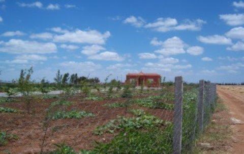 مزرعة بمنزل للبيع بضواحي بنسليمان : 5200م