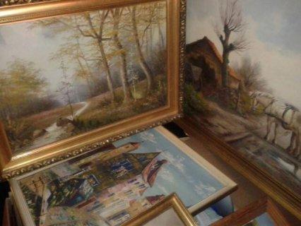 توجد لوحات زيتية قديمة وكمية لابائس بها