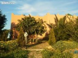 Ferme 15000 m2 à Mohammedia